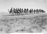 Camel Corps, World War 1