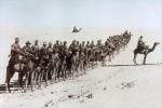Bikaner Camel Corps, 1915-16