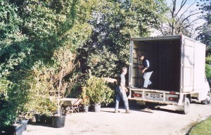003 Plants from Alan Soderlund of Total Plant Solutions September 2002