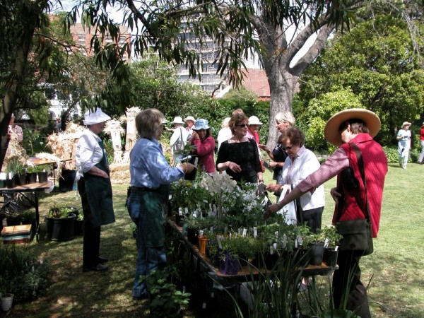 007 Plant stall - AOGS Opening October 2002