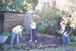 013 Planting Weeping Elm July 2003 - Sandy Pullman, Frank Coppens, Shelley Wood