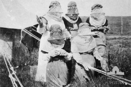 52 BGH Nurses in anti-malaria dress 1918 (AWM H15761)